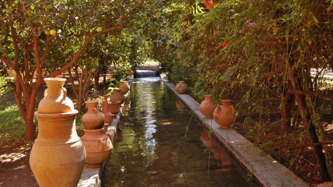 Oase in Tioute (Marokko)