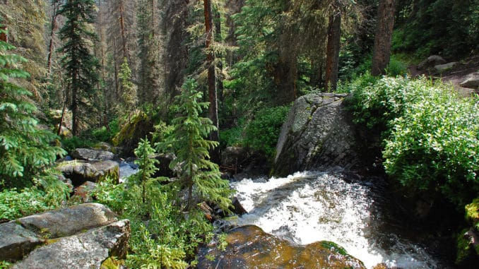 Fluß in den Rocky Mountains