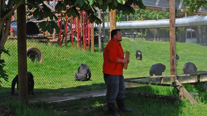 Monkey Talk in der Monkey World