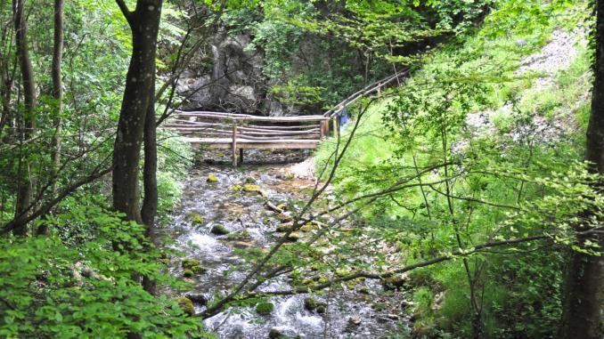 Bach zum Bigar Wasserfall