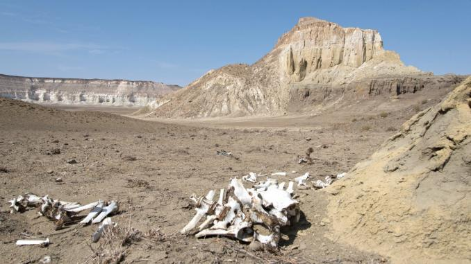 Region Mangystau in Kasachstan