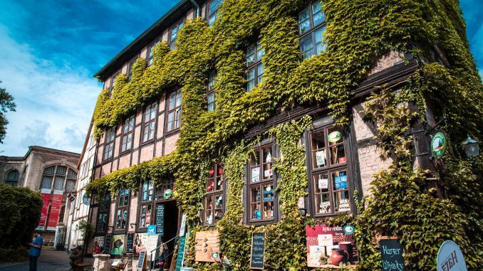 Bewachsenes Haus in Quedlinburg