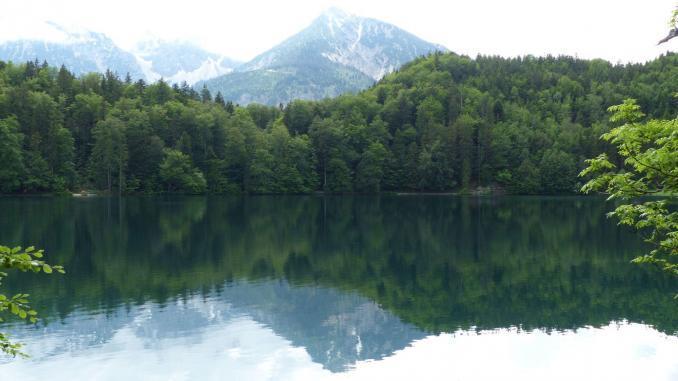 Seen im Ostallgäu: Alatsee