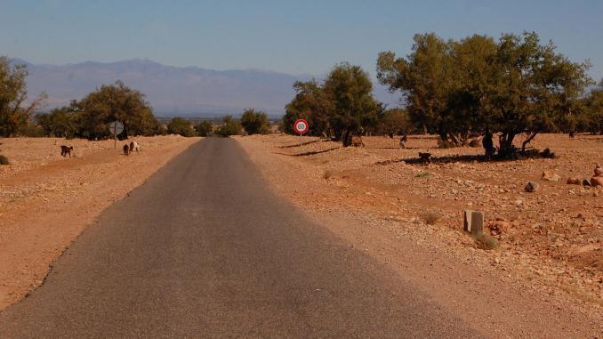 Verbindungsstraße Essaouira Marrakesch